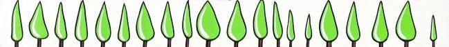 Green Cypresses 1