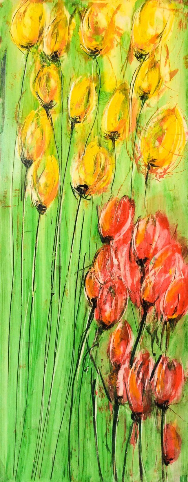 Tulips II 1