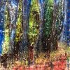 Cypresses in the dark 2