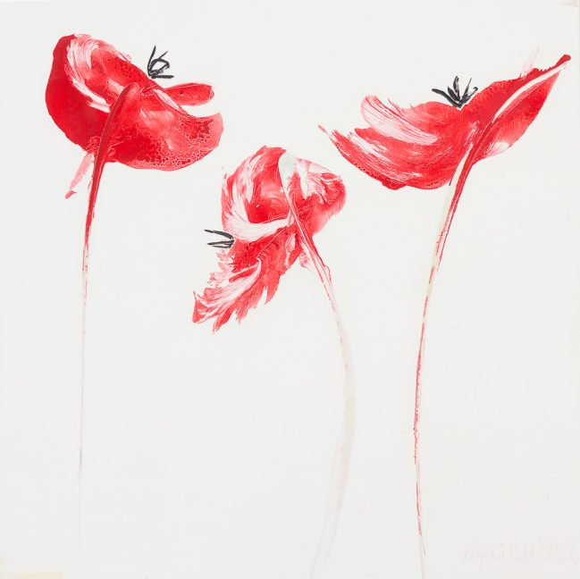 Red Poppies 1