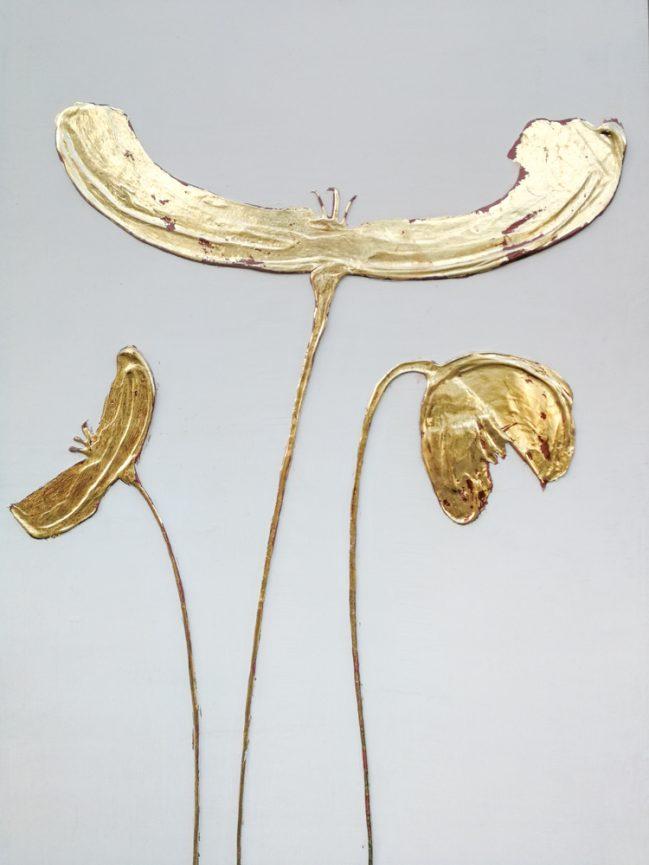 papaveri dorati, foglia d'oro, iguarnieri