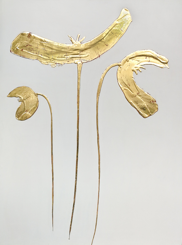 gold poppies medium