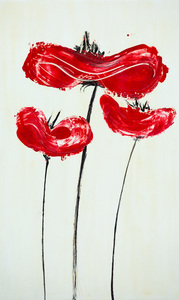 spring red poppies