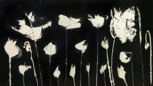 papaveri bianchi sul fondo nero 112 x 63 cm