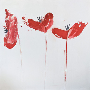 Red Poppies 48 x 48