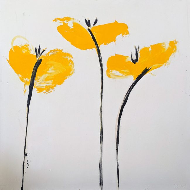 Yellow Poppies 48 x 48