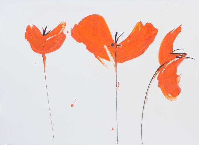 papaveri arancio landscape 70 x 94