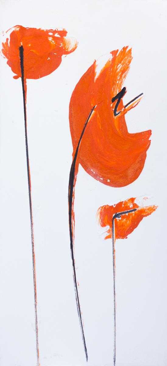 papaveri orange 26 x 56