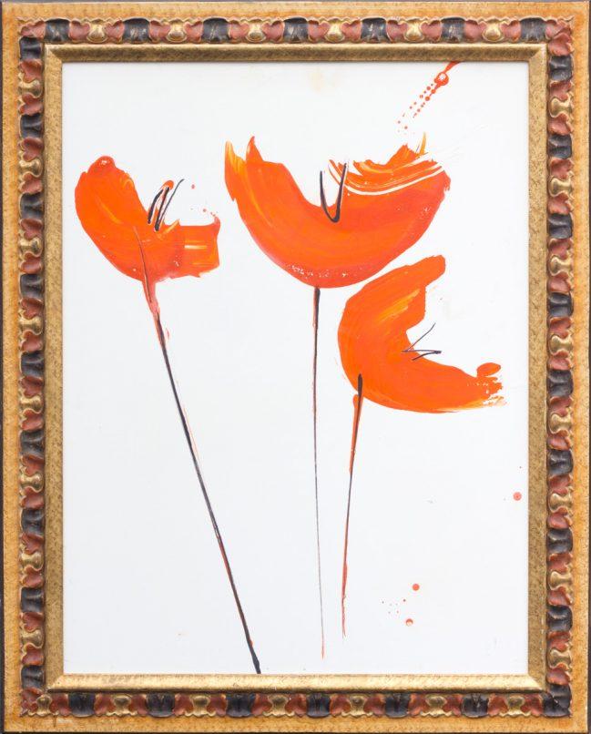 papaveri arance