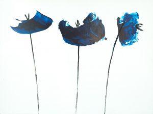 blu poppies
