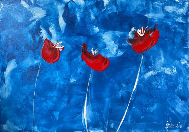 papaveri rossi sul cielo blu